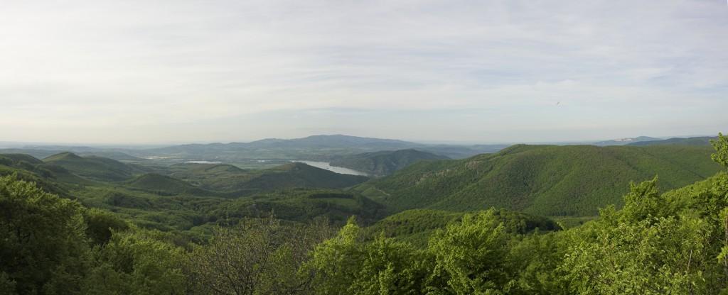 Donau Landschaft